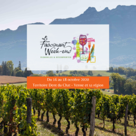 Venez vivre le Fascinant Week-end Vignobles & Découvertes !