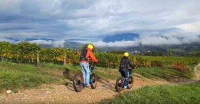 Du 16 au 18 octobre Fascinant Week-end Vignobles & Découvertes - Territoire Dent du Chat