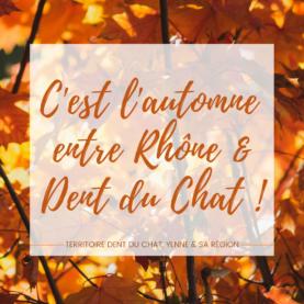 C'est l'automne entre Rhône et Dent du Chat !
